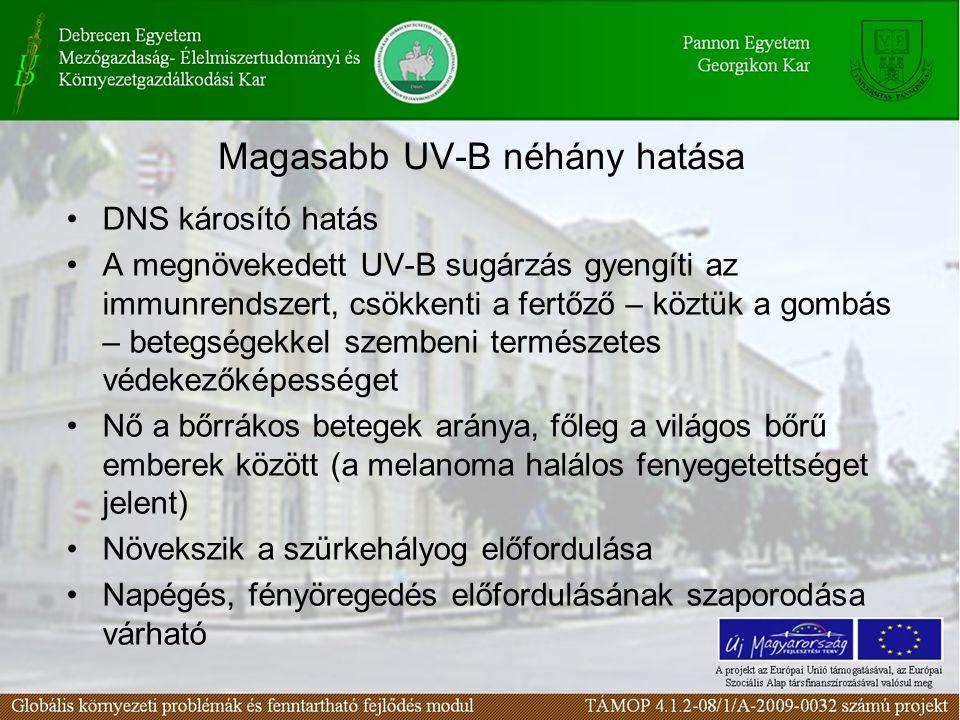 Magasabb UV-B néhány hatása
