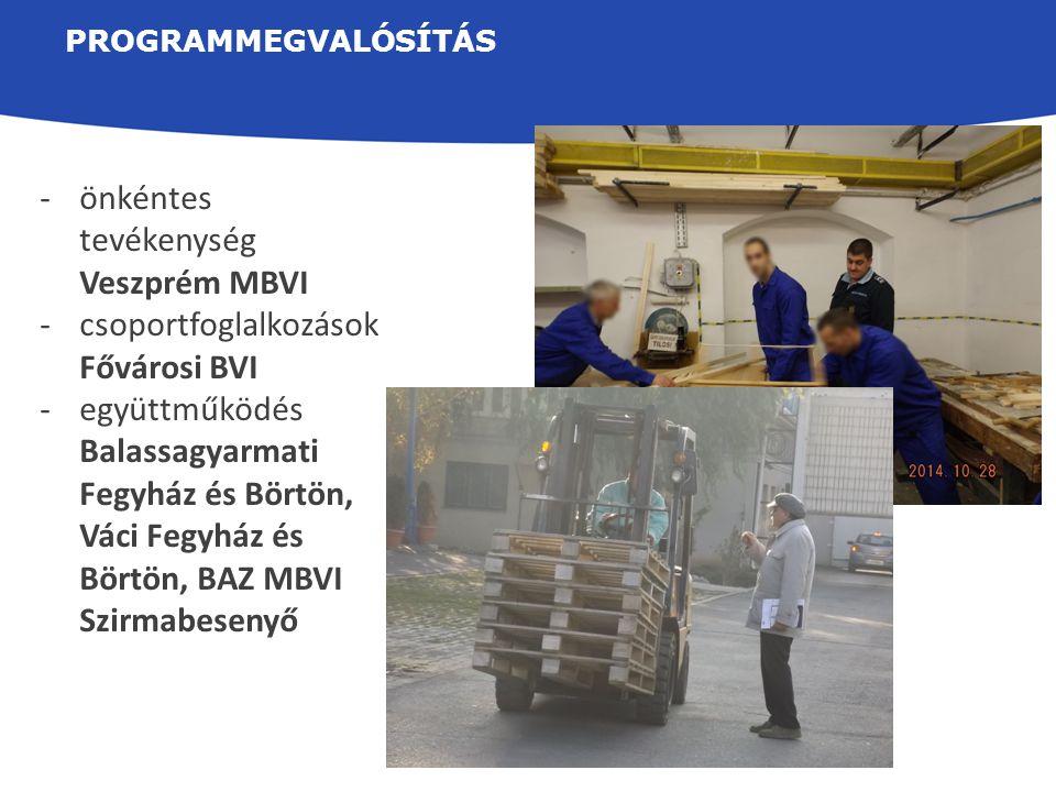 önkéntes tevékenység Veszprém MBVI