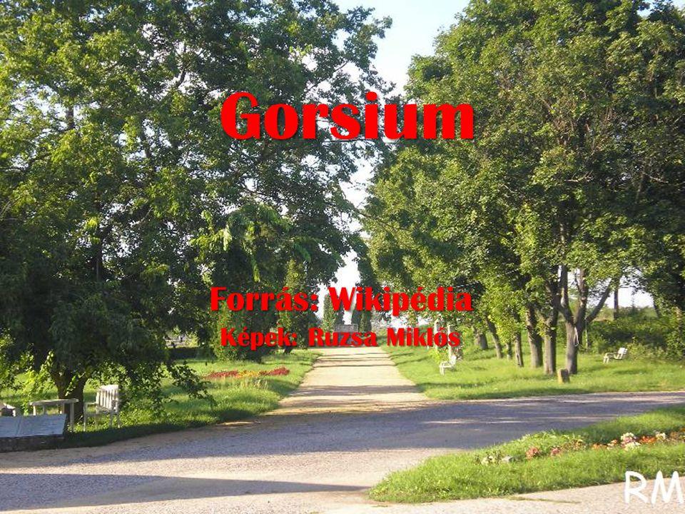 Gorsium Forrás: Wikipédia Képek: Ruzsa Miklós