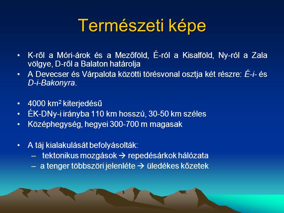 Természeti képe K-ről a Móri-árok és a Mezőföld, É-ról a Kisalföld, Ny-ról a Zala völgye, D-ről a Balaton határolja.