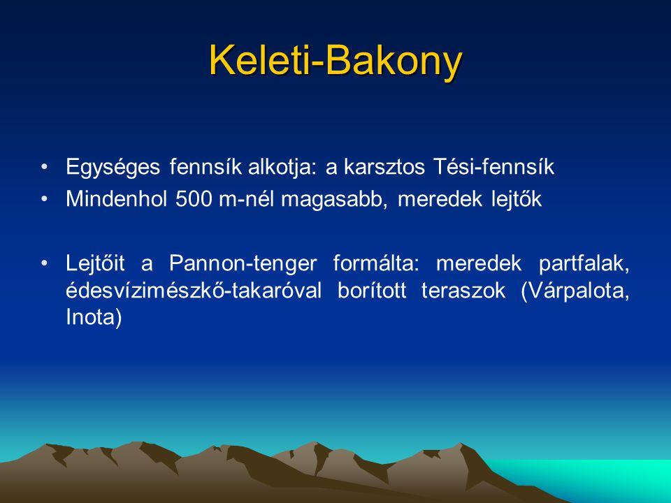 Keleti-Bakony Egységes fennsík alkotja: a karsztos Tési-fennsík