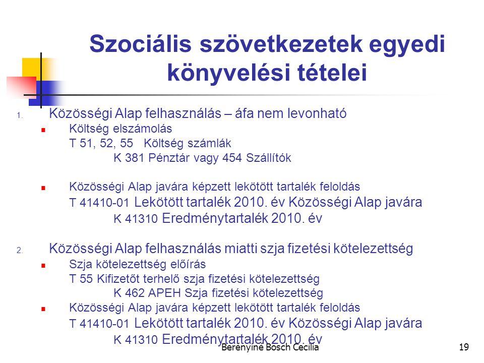 Szociális szövetkezetek egyedi könyvelési tételei