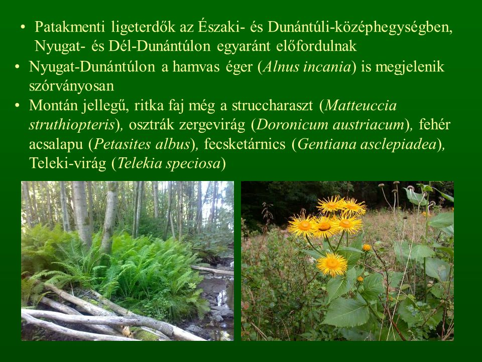 Patakmenti ligeterdők az Északi- és Dunántúli-középhegységben, Nyugat- és Dél-Dunántúlon egyaránt előfordulnak