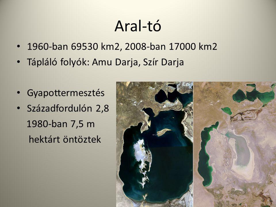Aral-tó 1960-ban 69530 km2, 2008-ban 17000 km2. Tápláló folyók: Amu Darja, Szír Darja. Gyapottermesztés.