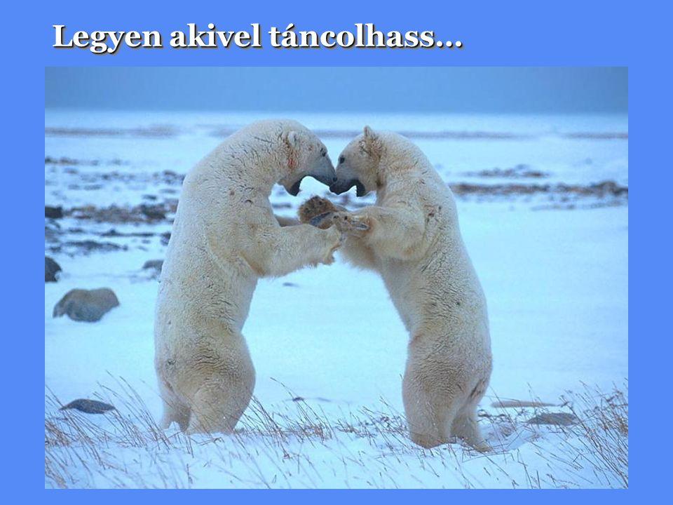 Legyen akivel táncolhass…