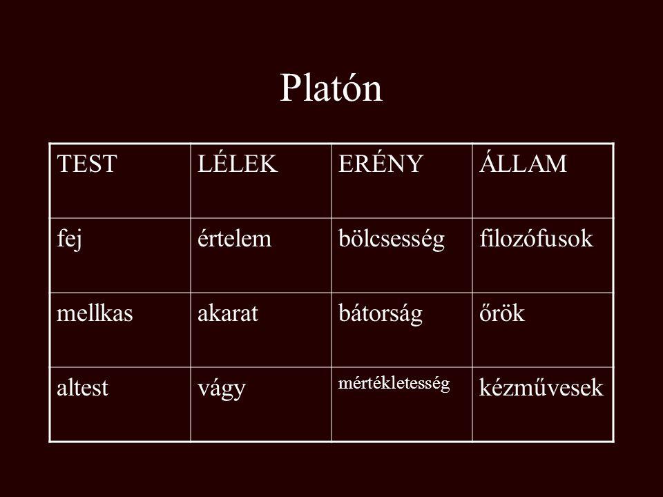 Platón TEST LÉLEK ERÉNY ÁLLAM fej értelem bölcsesség filozófusok