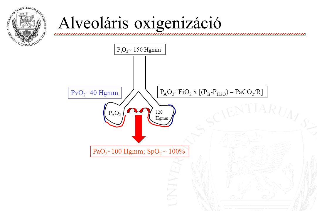 Alveoláris oxigenizáció