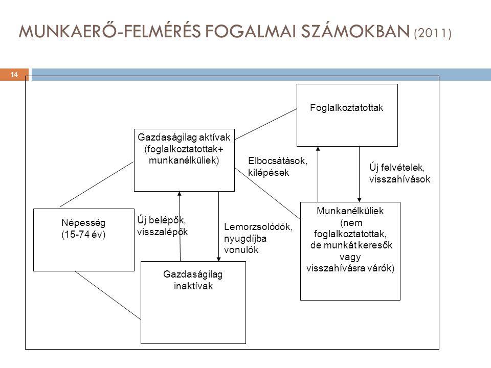 MUNKAERŐ-FELMÉRÉS FOGALMAI SZÁMOKBAN (2011)
