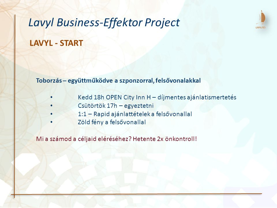 Lavyl Business-Effektor Project