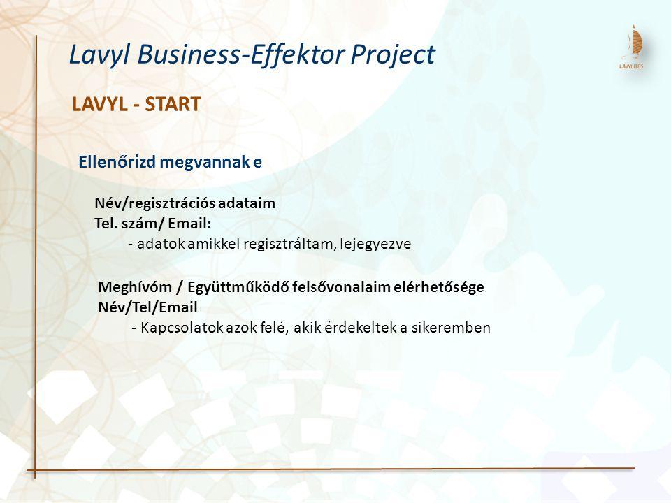 Lavyl Business-Effektor Project