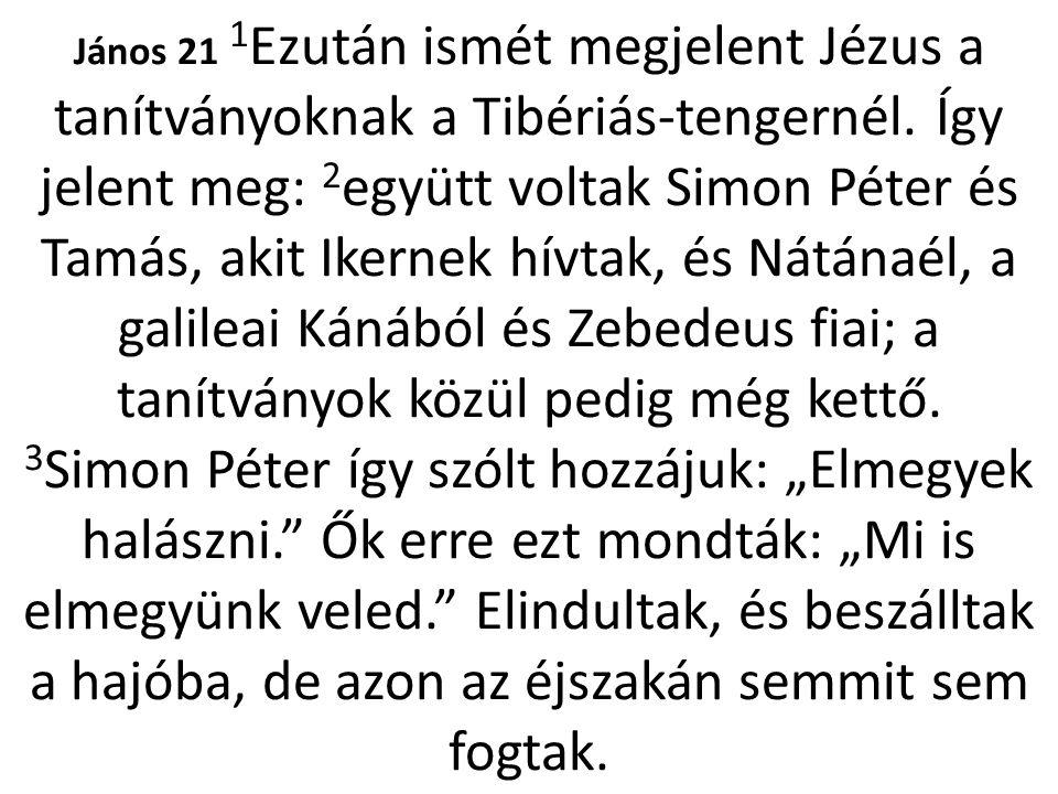 János 21 1Ezután ismét megjelent Jézus a tanítványoknak a Tibériás-tengernél.