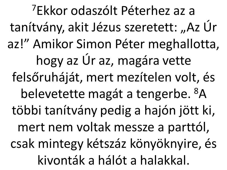 """7Ekkor odaszólt Péterhez az a tanítvány, akit Jézus szeretett: """"Az Úr az! Amikor Simon Péter meghallotta, hogy az Úr az, magára vette felsőruháját, mert mezítelen volt, és belevetette magát a tengerbe."""
