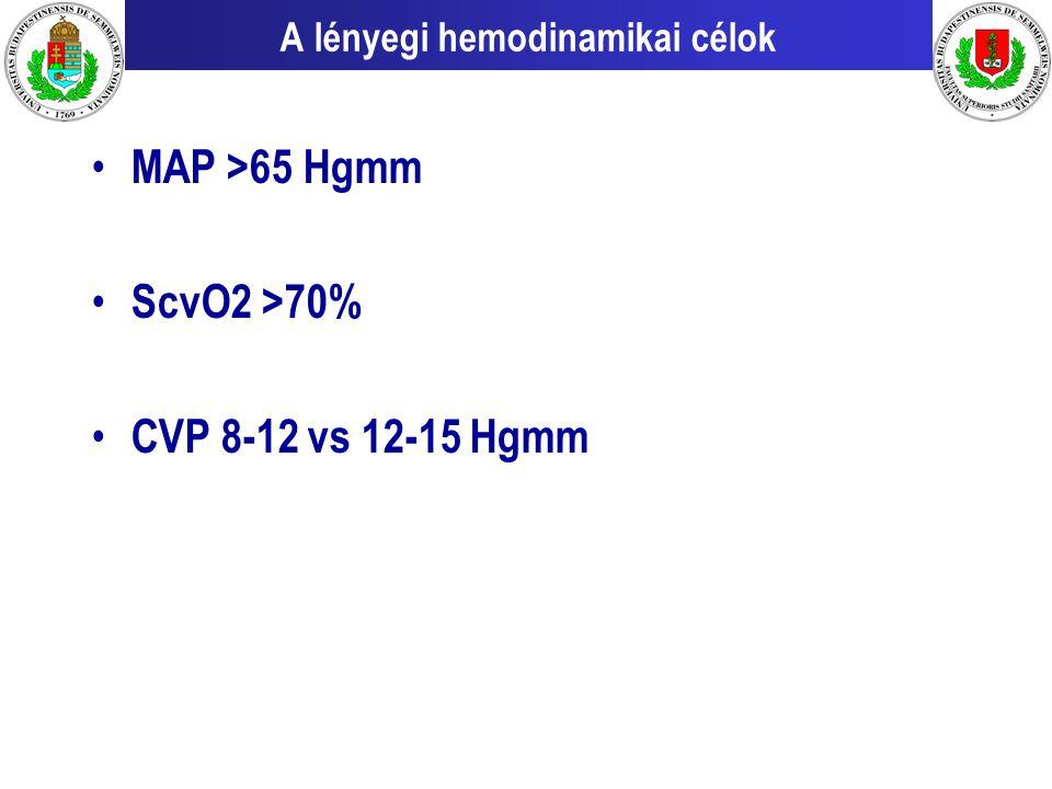 A lényegi hemodinamikai célok