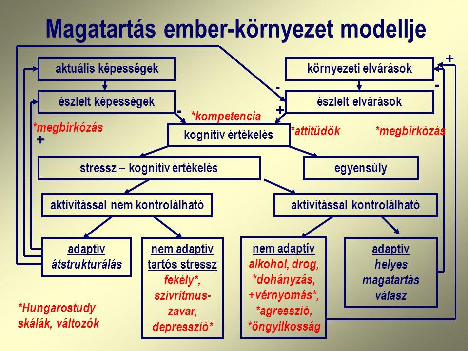 Magatartás ember-környezet modellje