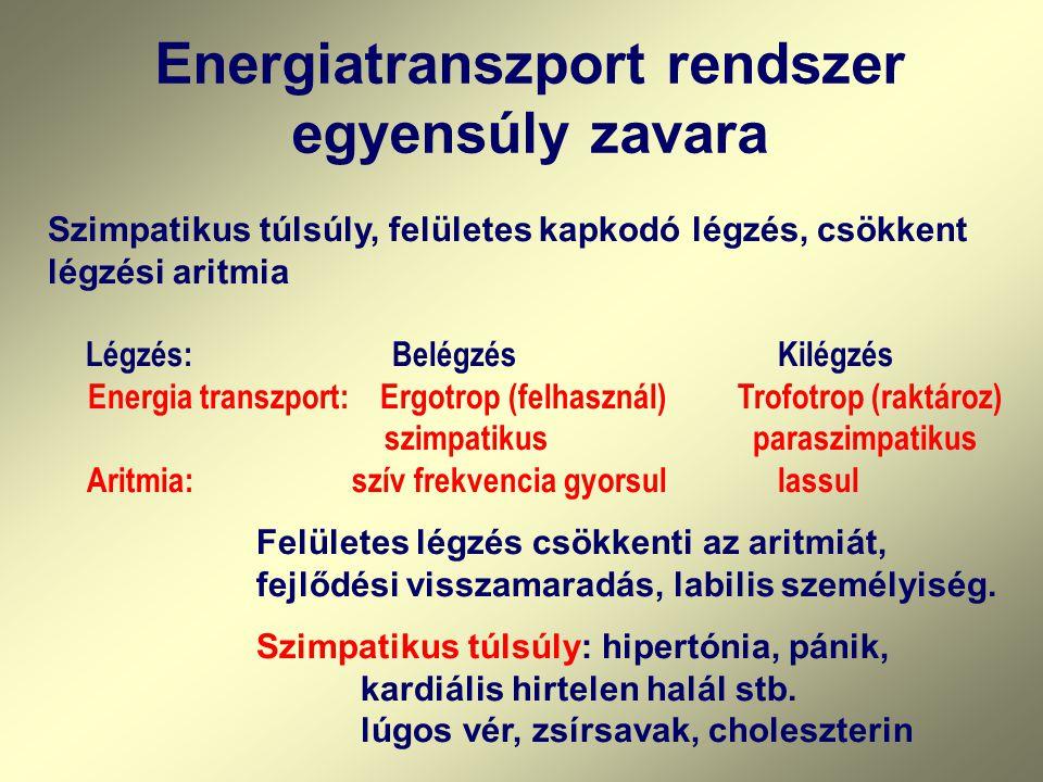 Energiatranszport rendszer egyensúly zavara