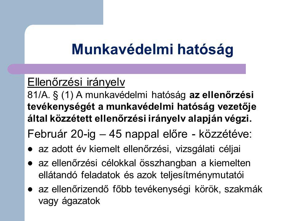 Munkavédelmi hatóság Ellenőrzési irányelv