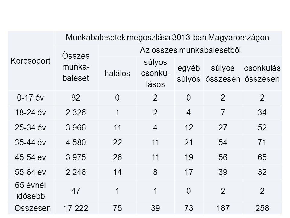 Munkabalesetek megoszlása 3013-ban Magyarországon