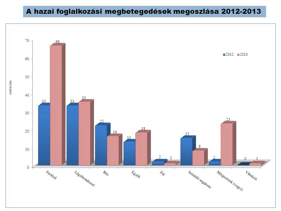 A hazai foglalkozási megbetegedések megoszlása 2012-2013
