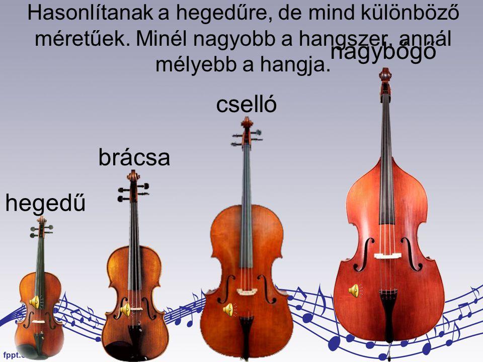 nagybőgő cselló brácsa hegedű