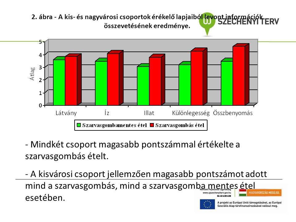 2. ábra - A kis- és nagyvárosi csoportok érékelő lapjaiból levont információk összevetésének eredménye.