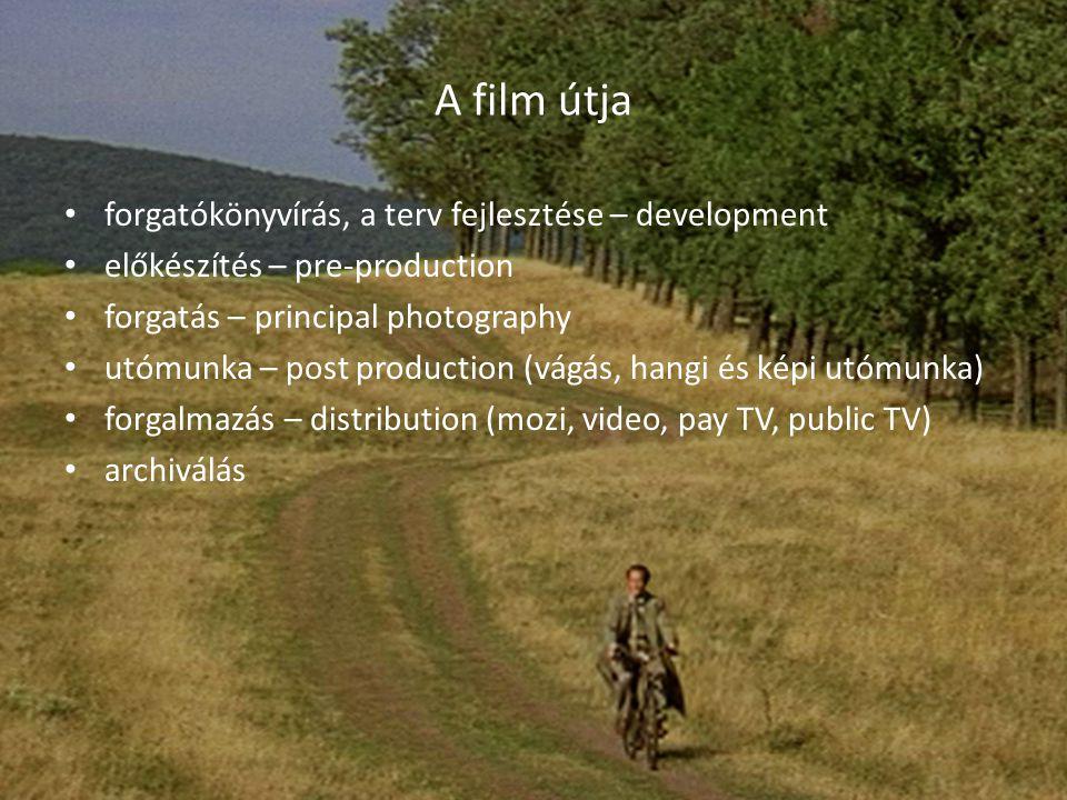 A film útja forgatókönyvírás, a terv fejlesztése – development