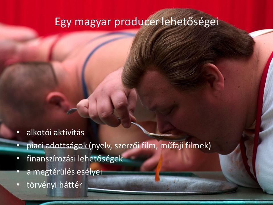 Egy magyar producer lehetőségei