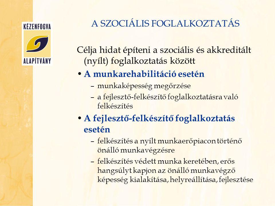 A SZOCIÁLIS FOGLALKOZTATÁS