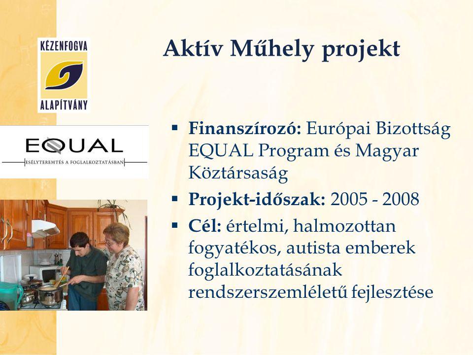 Aktív Műhely projekt Finanszírozó: Európai Bizottság EQUAL Program és Magyar Köztársaság. Projekt-időszak: 2005 - 2008.