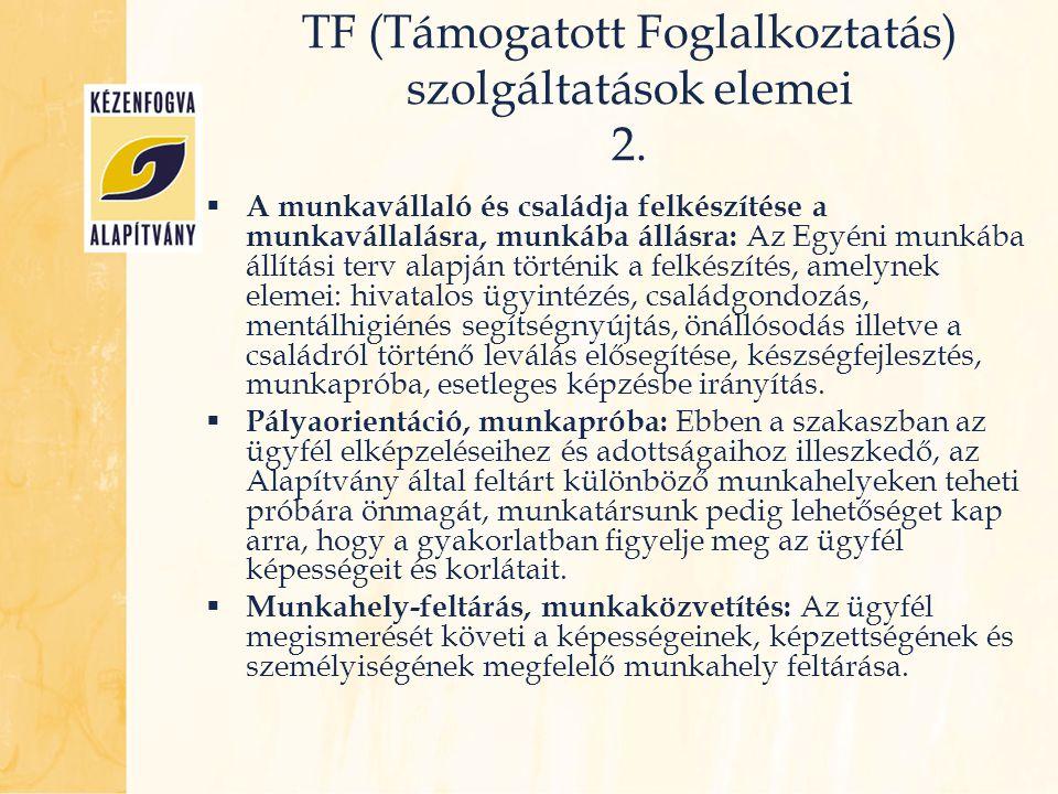 TF (Támogatott Foglalkoztatás) szolgáltatások elemei 2.
