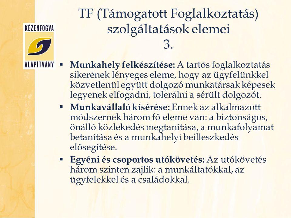 TF (Támogatott Foglalkoztatás) szolgáltatások elemei 3.