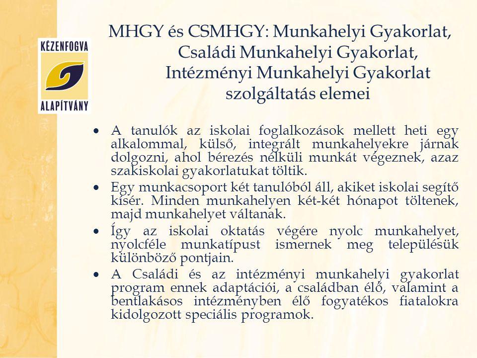 MHGY és CSMHGY: Munkahelyi Gyakorlat, Családi Munkahelyi Gyakorlat, Intézményi Munkahelyi Gyakorlat szolgáltatás elemei