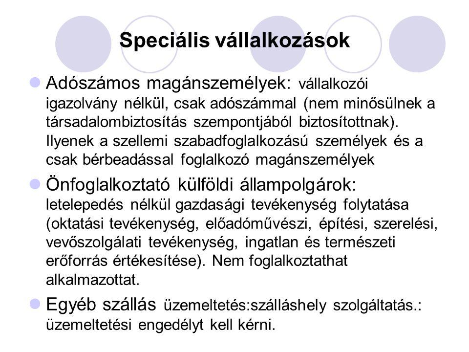 Speciális vállalkozások
