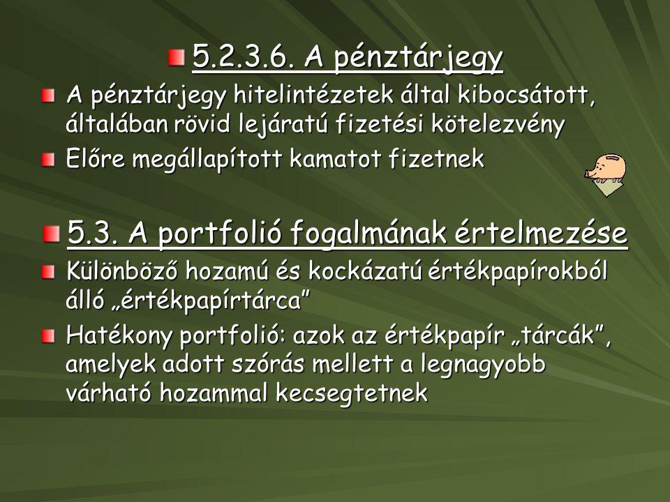 5.3. A portfolió fogalmának értelmezése