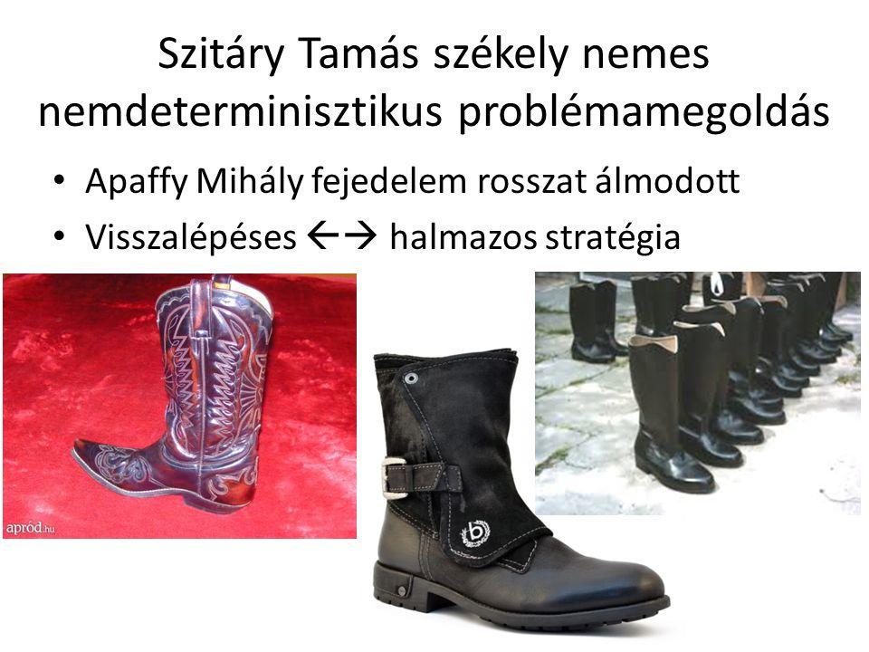 Szitáry Tamás székely nemes nemdeterminisztikus problémamegoldás