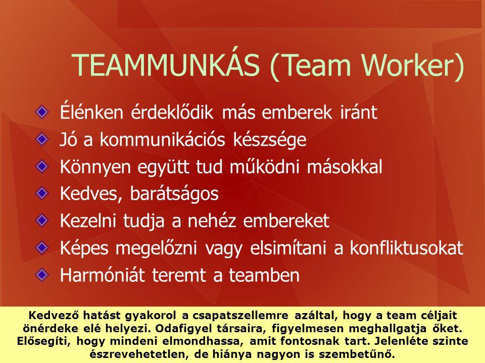 TEAMMUNKÁS (Team Worker)