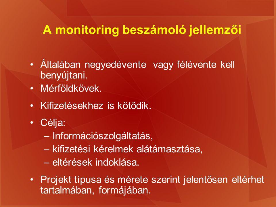 A monitoring beszámoló jellemzői