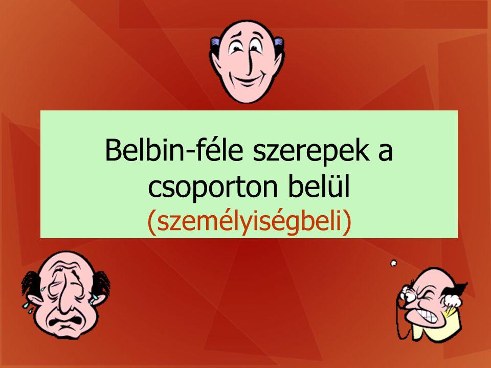 Belbin-féle szerepek a csoporton belül
