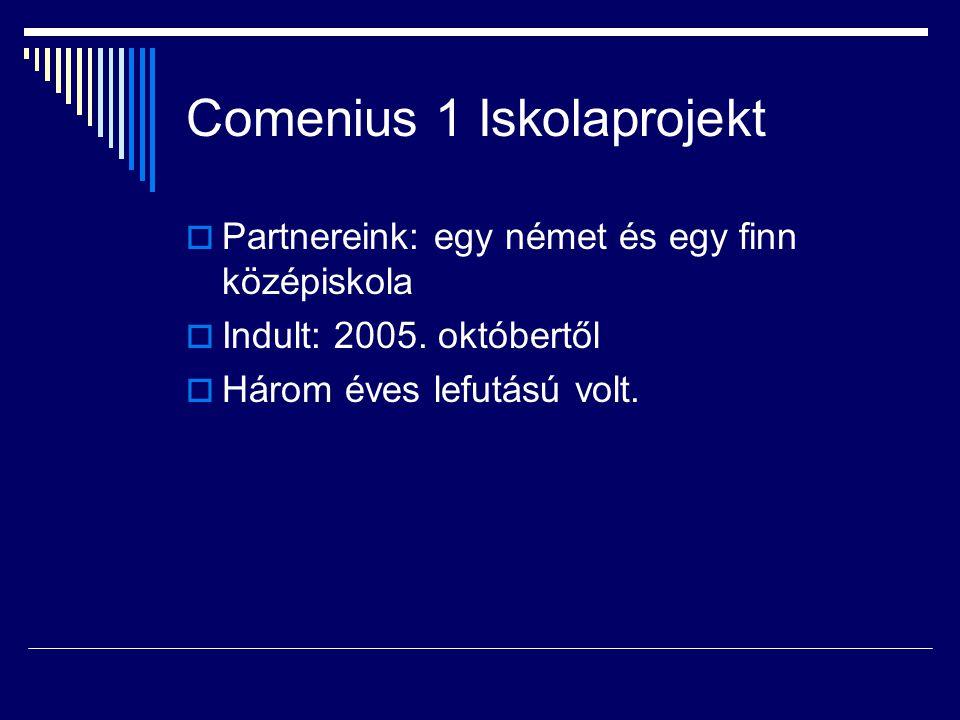 Comenius 1 Iskolaprojekt