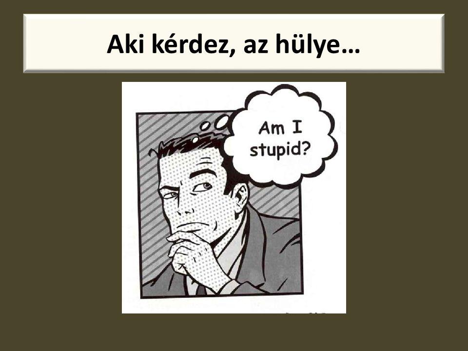 Aki kérdez, az hülye…