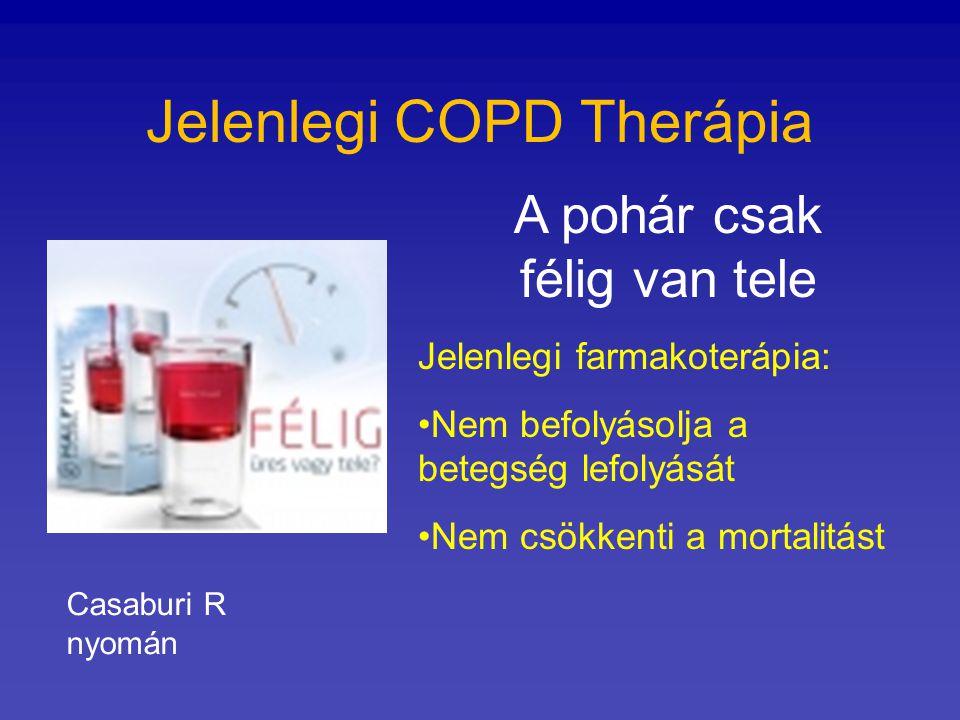 Jelenlegi COPD Therápia