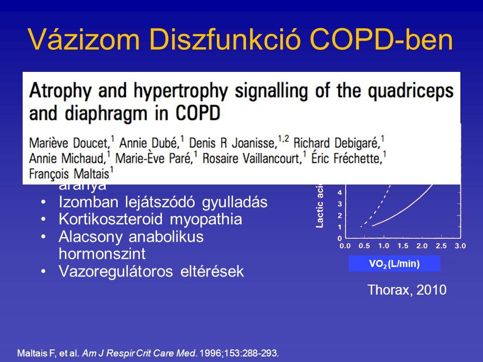 Vázizom Diszfunkció COPD-ben