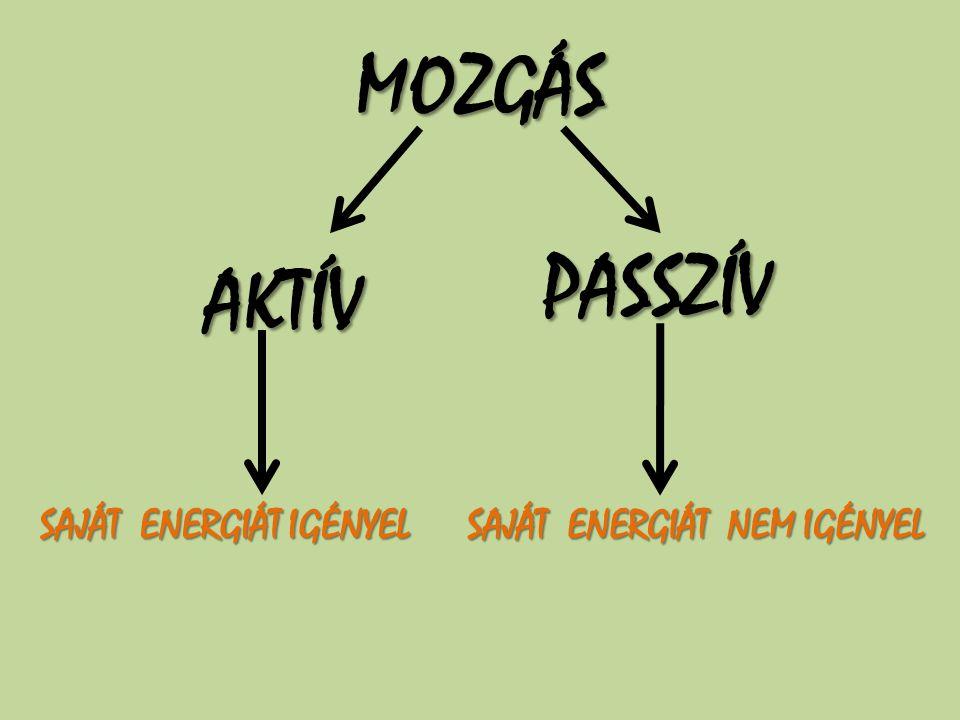 MOZGÁS PASSZÍV AKTÍV SAJÁT ENERGIÁT IGÉNYEL SAJÁT ENERGIÁT NEM IGÉNYEL
