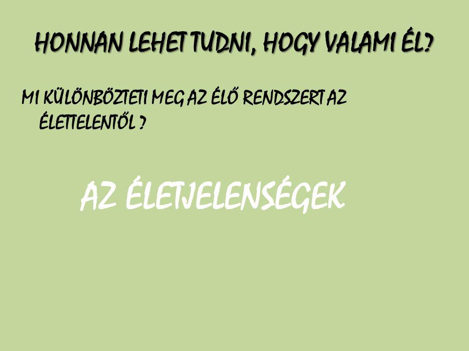 HONNAN LEHET TUDNI, HOGY VALAMI ÉL