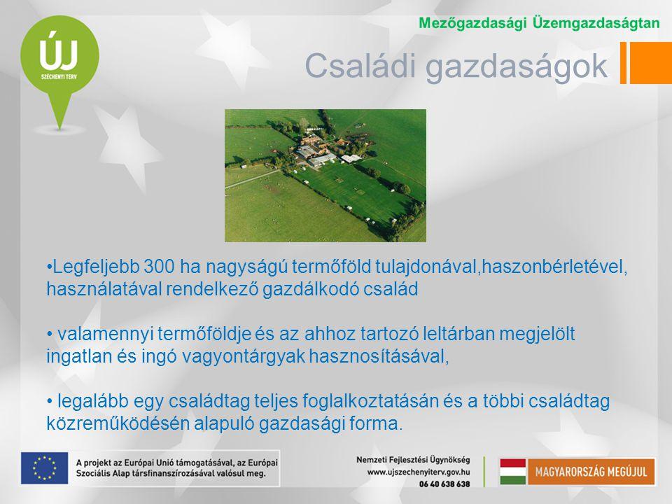 Családi gazdaságok Legfeljebb 300 ha nagyságú termőföld tulajdonával,haszonbérletével, használatával rendelkező gazdálkodó család.