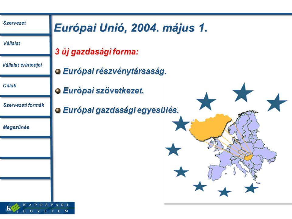 Európai Unió, 2004. május 1. 3 új gazdasági forma: