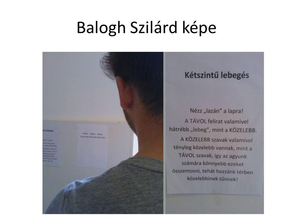 Balogh Szilárd képe