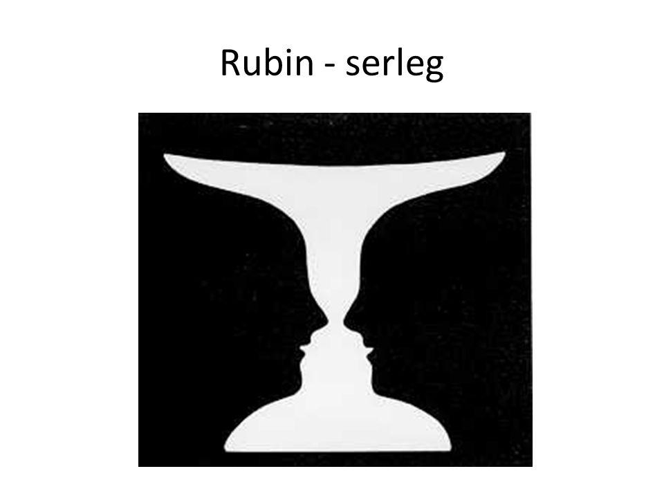 Rubin - serleg