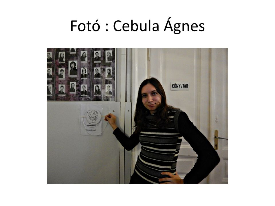 Fotó : Cebula Ágnes