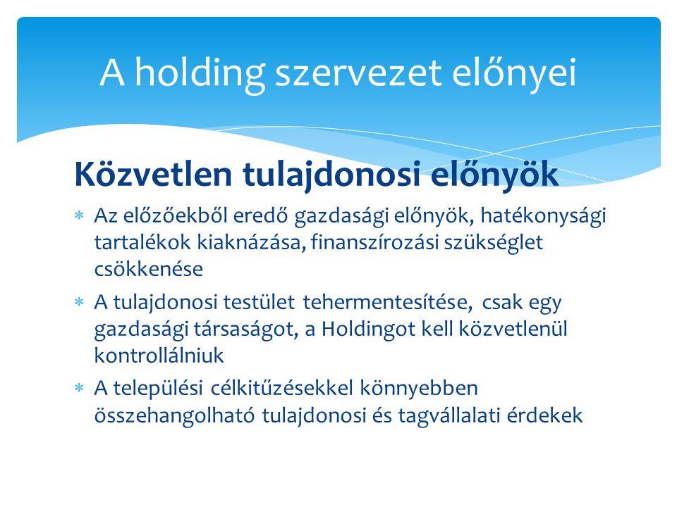 A holding szervezet előnyei