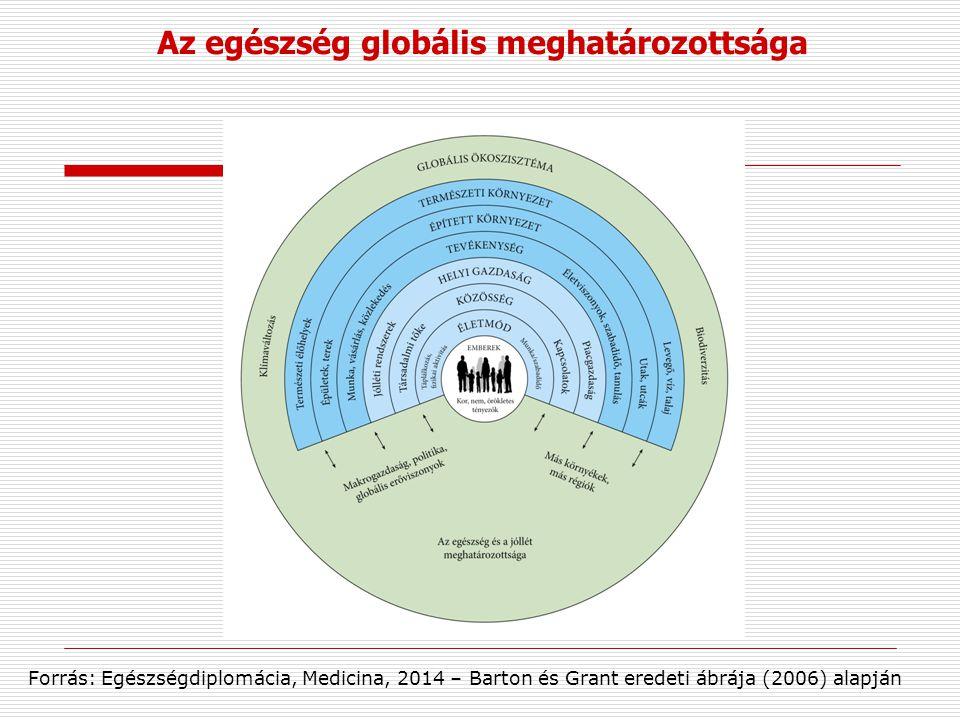 Az egészség globális meghatározottsága